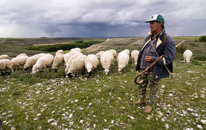 Ramón Martín, el pastor de Alfambra que podría ser el creador del CrossFit